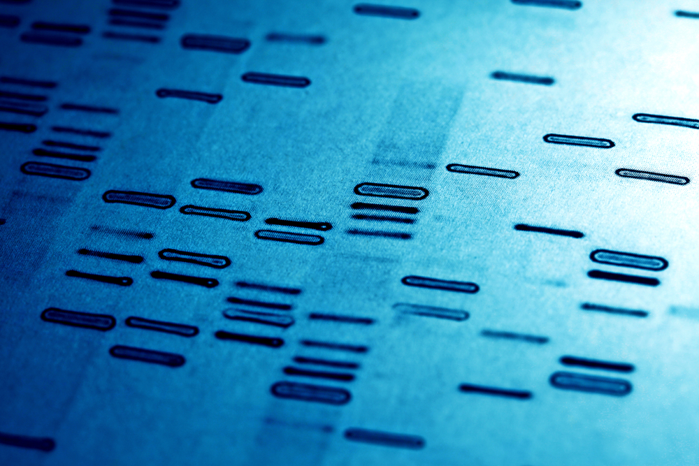 DNA coeliac
