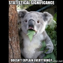 "Koala bear with eucalyptus in mouth with words ""Statistical Significance doesn't explain everything?"""