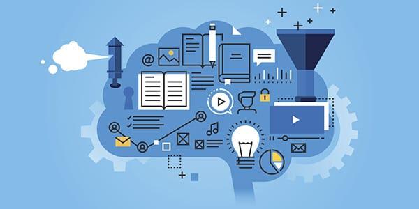 Cartoon brain - implementation research