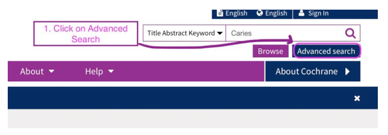 Showing how to access the Cochrane PICO search. Enter the search term into the search box and click on the advanced search button.